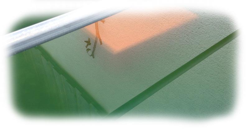 beispiel-gruenes-wasser-im-teich
