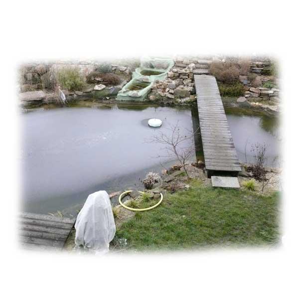 Eisflaeche Im Fruehling Auf Dem Teich