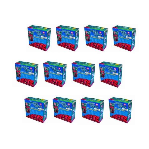12 Stück Erdbeer Pflanzenampeln