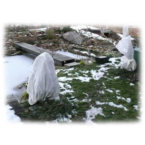teichpflege-im-winter