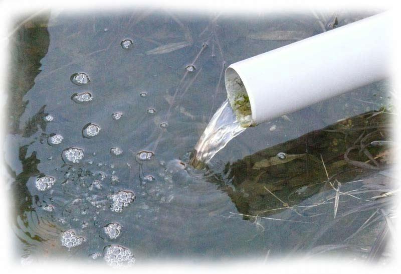 ruecklauf-ueber-teichwasseroberflaeche
