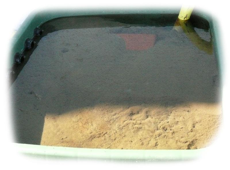 reinigen-der-filteranlage-am-koiteich