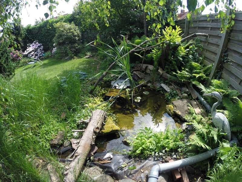 Erfahrungsbericht zum teichfilter von for Gartenteich algenfrei