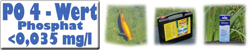 po4-phosphat-im-teichwasser-banner